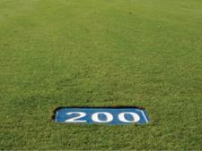 Flat markers (numbered)