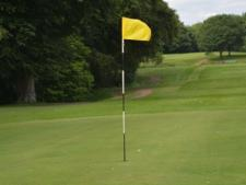 Flagsticks