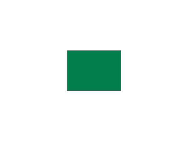 Single flag Plain nylon<br>GREEN tube-lock (1 pc)